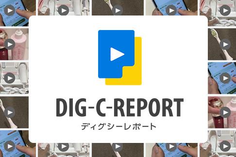 dig-c-report
